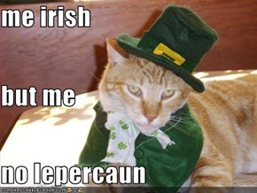 me irish but me  no lepercaun