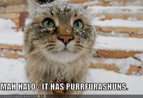 MAH HALO - IT HAS PURRFURASHUNS.