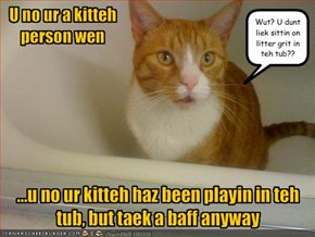 U no ur a kitteh person wen