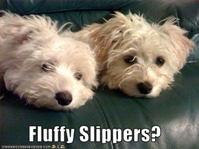 Fluffy Slippers?