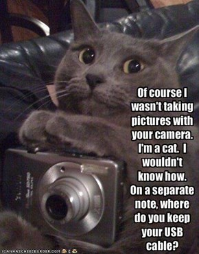 Of course I wasn't taking pictures with your camera.  I'm a cat.  I wouldn't know how.On a separate note, where do you keep your USB cable?