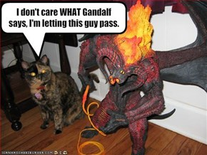 I don't care WHAT Gandalf says, I'm letting this guy pass.