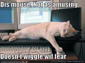 Dis mouse. Not as amusing  Doesn't wiggle wif fear
