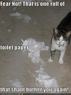 Fear Not! That is one roll of toilet paper that shant bother you again!