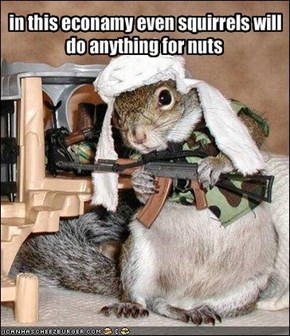 in this econamy even squirrels will do anything for nuts