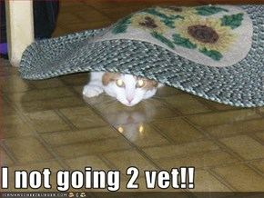 I not going 2 vet!!