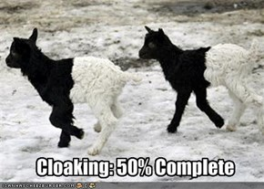 Cloaking: 50% Complete