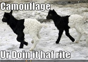 Camouflage  Ur Doin it haf rite