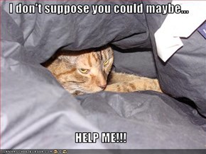 I don't suppose you could maybe...  HELP ME!!!