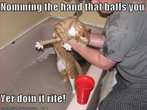 Nomming the hand that baffs you  Yer doin it rite!