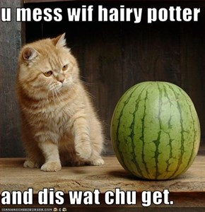 u mess wif hairy potter  and dis wat chu get.