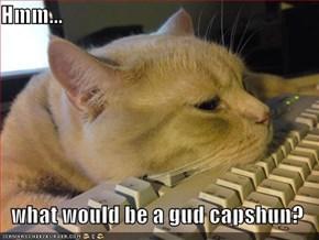 Hmm...  what would be a gud capshun?