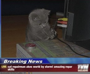 Breaking News - cat repairman akes world by storm! amazing repar skillz