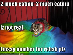 2 much catnip, 2 much catnip iz not real Linsay number for rehab plz