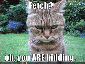 Fetch?  oh, you ARE kidding.