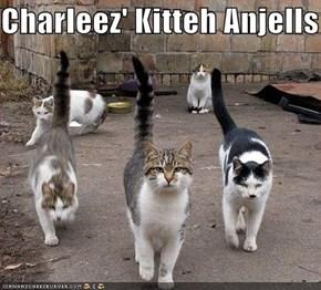 Charleez' Kitteh Anjells