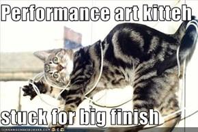 Performance art kitteh  stuck for big finish