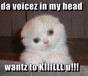 da voicez in my head  wantz to KIIILLL u!!!