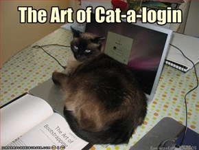 The Art of Cat-a-login