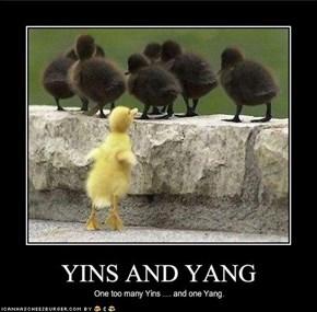 YINS AND YANG