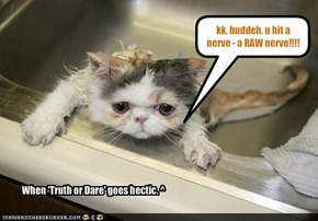 kk, buddeh. u hit a nerve - a RAW nerve!!!!