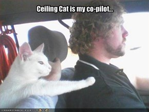 Ceiling Cat is my co-pilot...