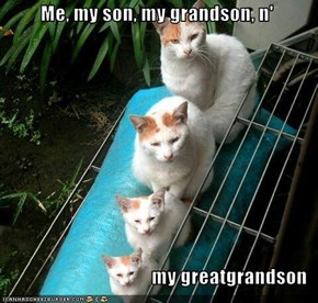 Me, my son, my grandson, n'       my greatgrandson
