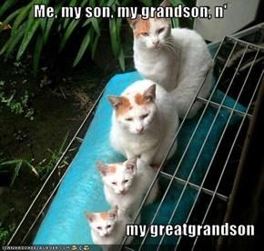 Me, my son, my grandson, n'       my greatgrandson