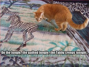On the Jungle,  the quilted Jungle,  the Tabby creeps tonight...