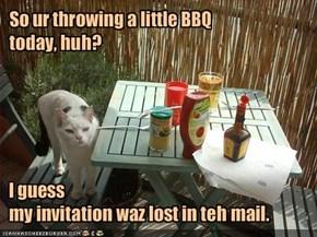 I guess my invitation waz lost in teh mail.