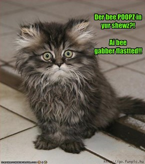 Der bee POOPZ in yur shewz?!Ai bee gabber flastted!!