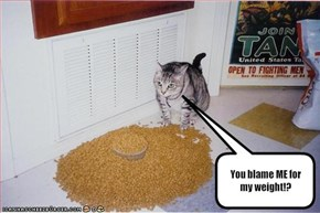 You blame ME for my weight!?