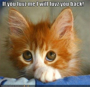 If you luvz me I will luvz you back!