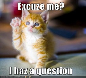 Excuze me?  I haz a question
