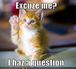 Excuze me?  I haz a question