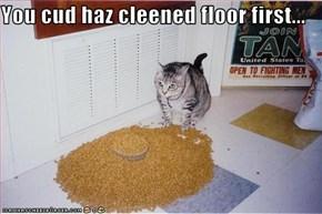 You cud haz cleened floor first...