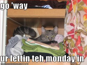go 'way  ur lettin teh monday in