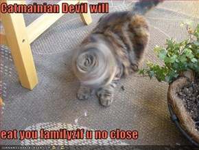 Catmainian Devil will   eat you familyzif u no close