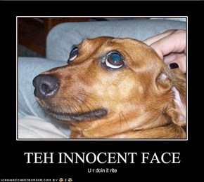 TEH INNOCENT FACE