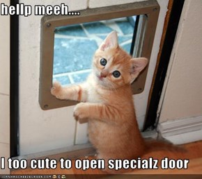 hellp meeh....  I too cute to open specialz door