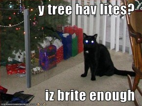 y tree hav lites?  iz brite enough