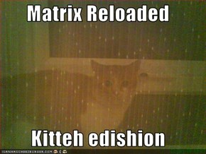 Matrix Reloaded  Kitteh edishion
