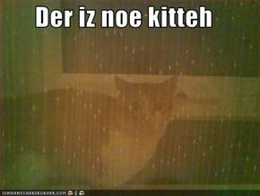 Der iz noe kitteh