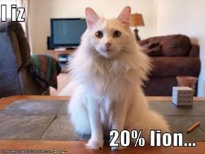 I iz  20% lion...