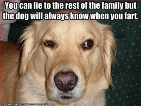 You can lie to the rest of the family but the dog will always know when you fart.