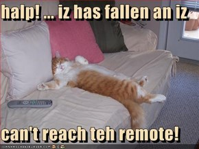 halp! ... iz has fallen an iz  can't reach teh remote!