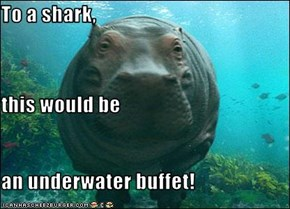 To a shark, this would be an underwater buffet!