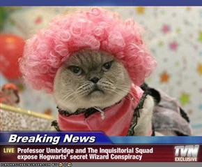 Breaking News - Professor Umbridge and The Inquisitorial Squad expose Hogwarts' secret Wizard Conspiracy