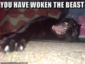 YOU HAVE WOKEN THE BEAST