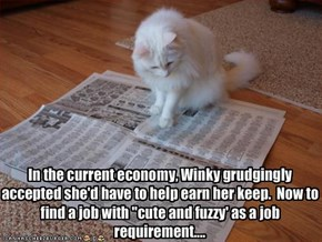 "In the current economy, Winky grudgingly accepted she'd have to help earn her keep.  Now to find a job with ""cute and fuzzy' as a job requirement...."